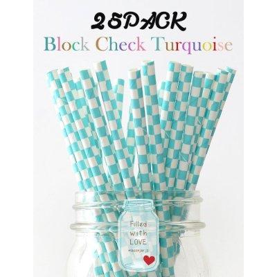 画像1: メイソンジャー Ball Mason jar タンブラー エコ 再生可能 紙ストロー25本入り サーキュラーエコノミー Block Check Turquoise